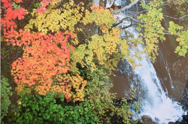 恵庭渓谷の秋