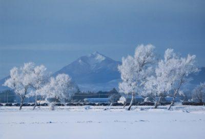 冬の恵庭岳